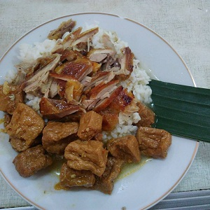 Nasi Opor Sunggingan