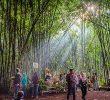 27 Tempat Wisata di Temanggung yang Selalu Ngangenin