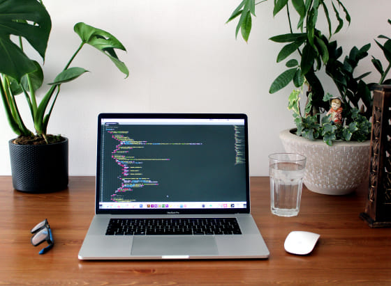 Um notebook aberto da cor prateado em cima de uma mesa. Na tela, um programa para auxiliar na criação de linahs de código. Ao lado da imagem, um copo cheio de água e algumas planatas.