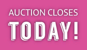 2016 Teton Guitars Pink Campaign Charity Auction