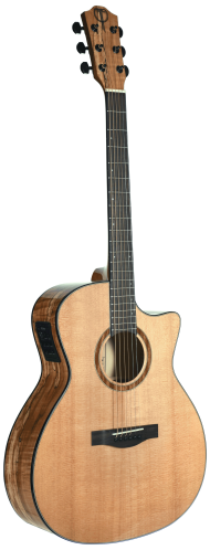 STA130SMCENT Teton Auditorium Acoustic Guitar Cutaway