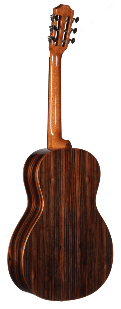 STP180NT Parlor Teton Guitar - Back and Sides
