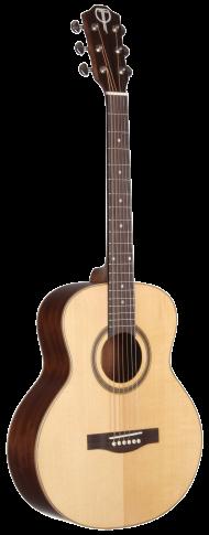 STR100NT-OP Open Pore Range Teton Guitar - Back and Sides