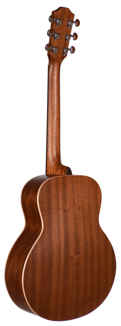 STR103NT-OP Teton Range Acoustic Guitar Back and Sides
