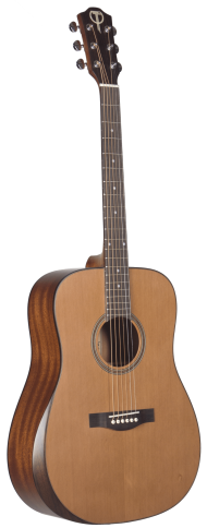 STS105NT-AR Teton Acoustic Guitar