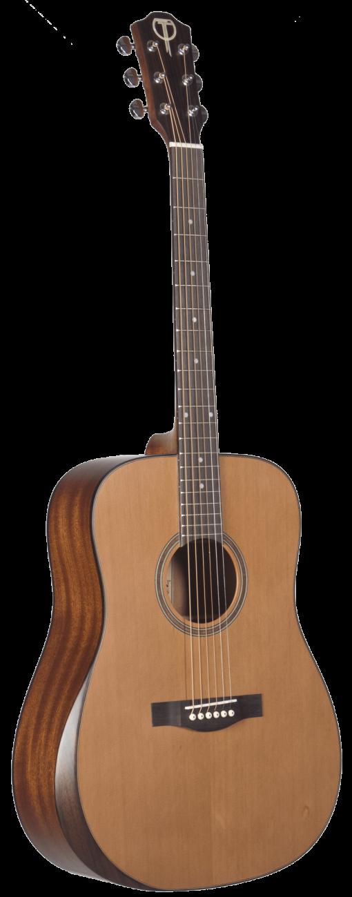 STS105NT-AR Teton Acoustic Guitar