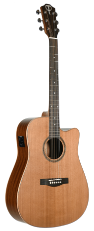 STS105CENT Teton Dreadnought Guitar