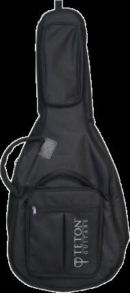 Teton's TC675 3/4 Scale Gig Bag