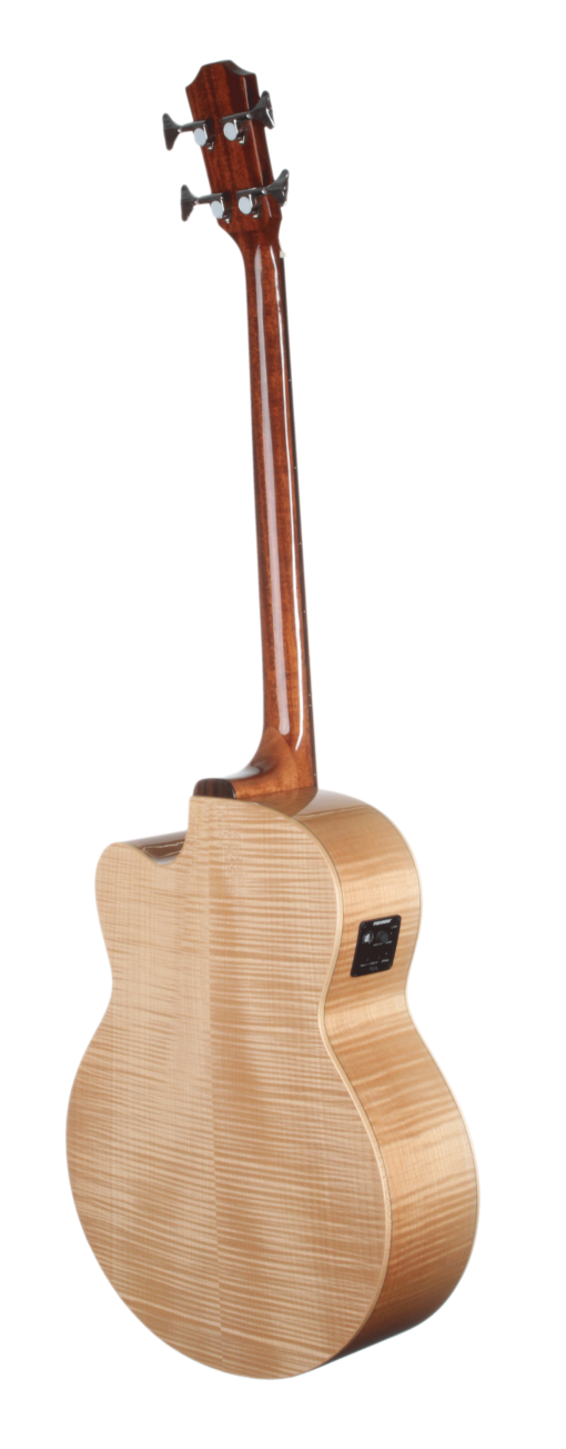 STB130FMCENT Spruce and Flame Maple Bass Acoustic Teton Guitar with Fishman Electronics - Back and Sides