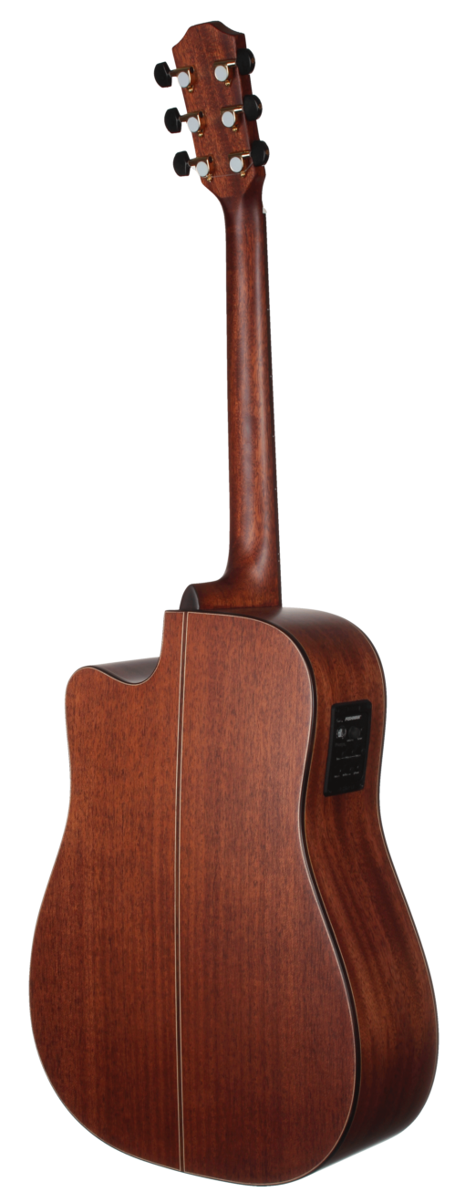 STG205CENT 200 Series All Solid Teton Dreadnought Acoustic Cutaway Guitar Back and Sides
