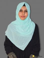 Georgette Stole With Dot Print In Mint Image