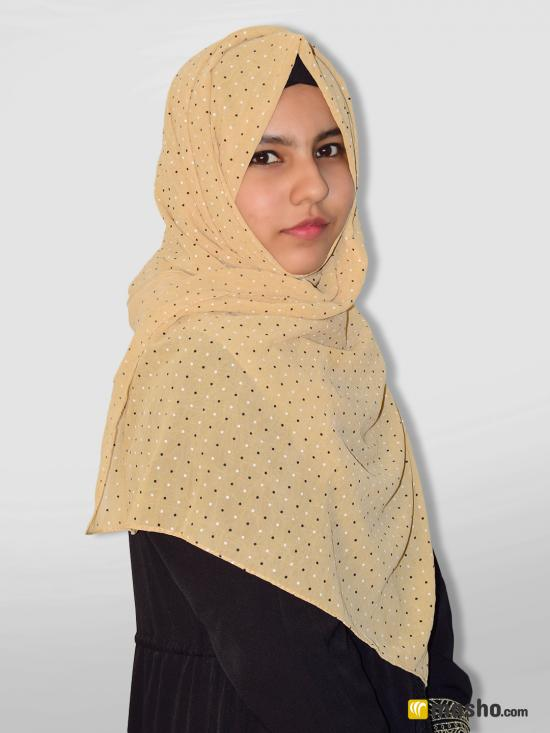 Georgette Stole With Dot Print In Beige