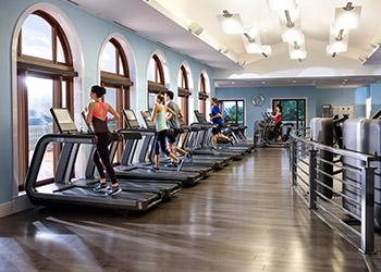 A row of treadmill machines