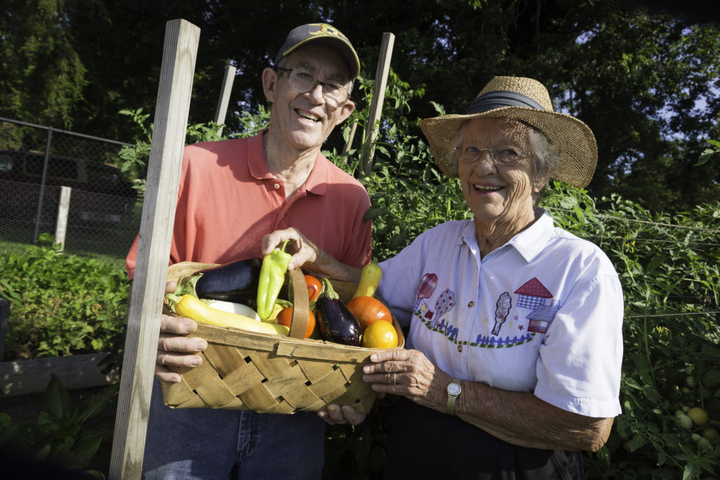 senior couple picking vegetables from resident garden