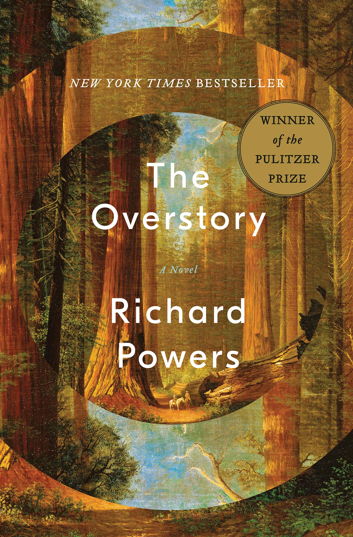 Richard Power's book, The Overstory, an escape into the natural world.