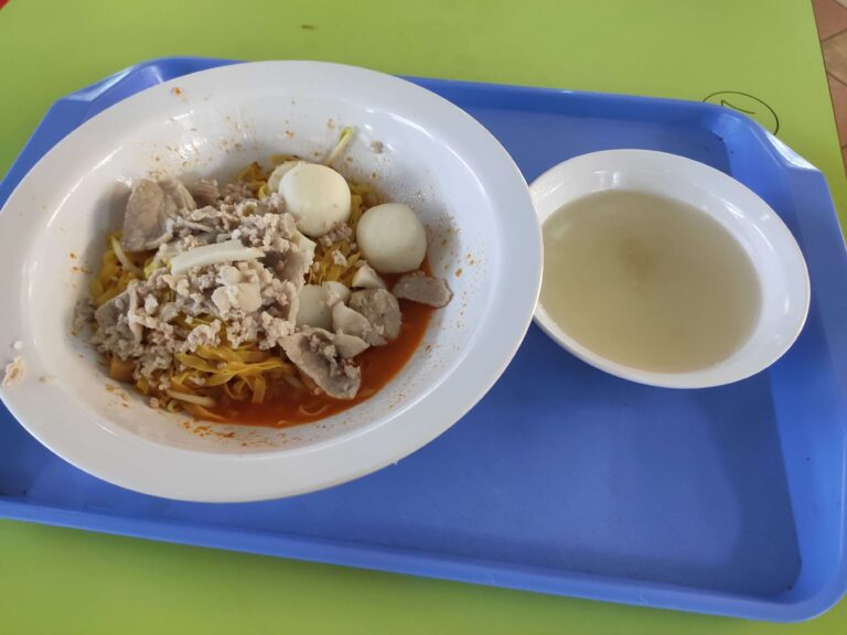 Ang Seng Teochew Noodle: Mee Pok with Soup