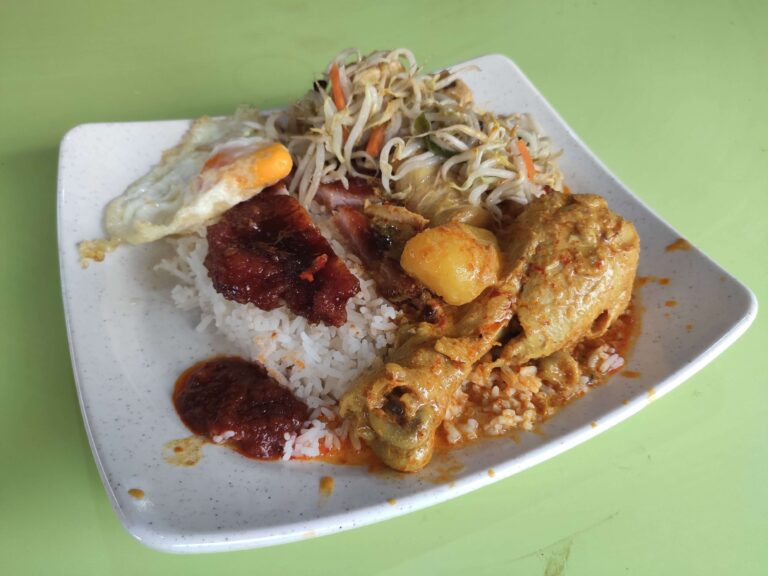 Yummy Rice Shop: Pork Chop, Curry Chicken, Bean Sprouts, Egg with Rice