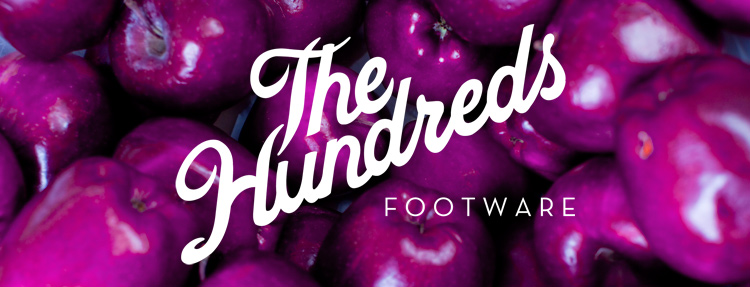fall09footware_thehundreds9