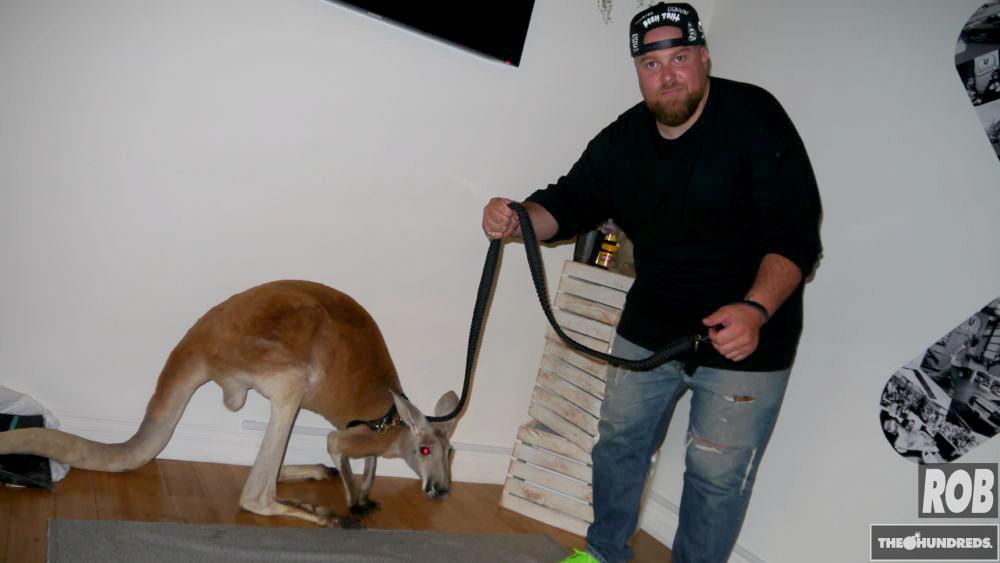 jon buscemi kangaroo