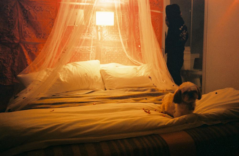 Room_1203_1