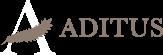 Aditus S.r.l.