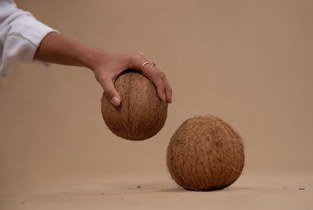 SoavaCoconuts4.jpg