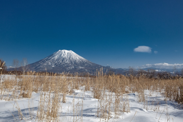 The First-Timer's Guide to Niseko: 10 Things to Know When Planning Your Ski Trip