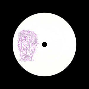 "Ray Kandinski Stenocactus Crispatus Cactus Traxx 12"" Vinyl"