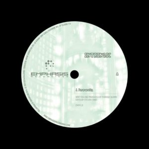 "Intrinsic Firewalls Emphasis 12"" Vinyl"