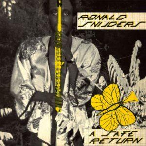 Ronald Snijders A Safe Return Everland LP, Reissue Vinyl