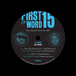 """14KT, Tall Black Guy I Will Never Know / The Power Of Same (Remixes) First World Records 7"""" Vinyl"""