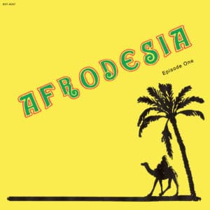 "Afrodesia Episode One Best Record 12"" Vinyl"