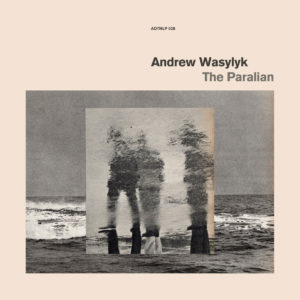 Andrew Wasylyk The Paralian Athens Of The North LP Vinyl