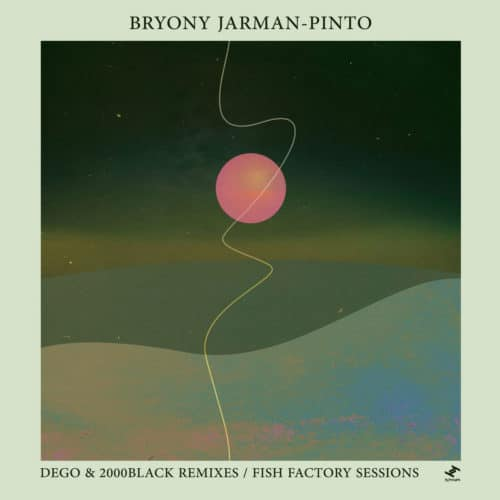 "Bryony Jarman-Pinto Dego & 2000Black Remixes Tru Thoughts 12"" Vinyl"