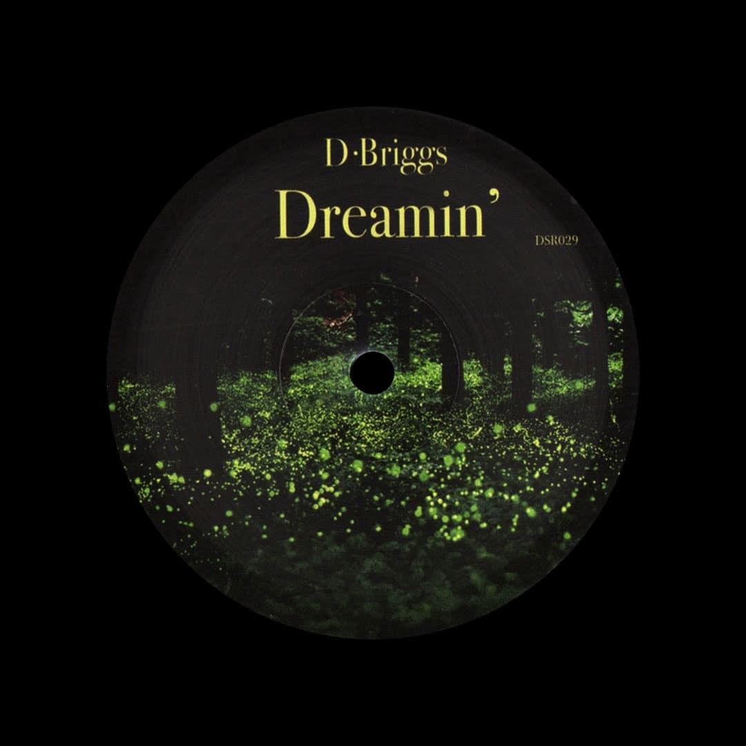 "D. Briggs Dreamin' Dailysession 12"" Vinyl"