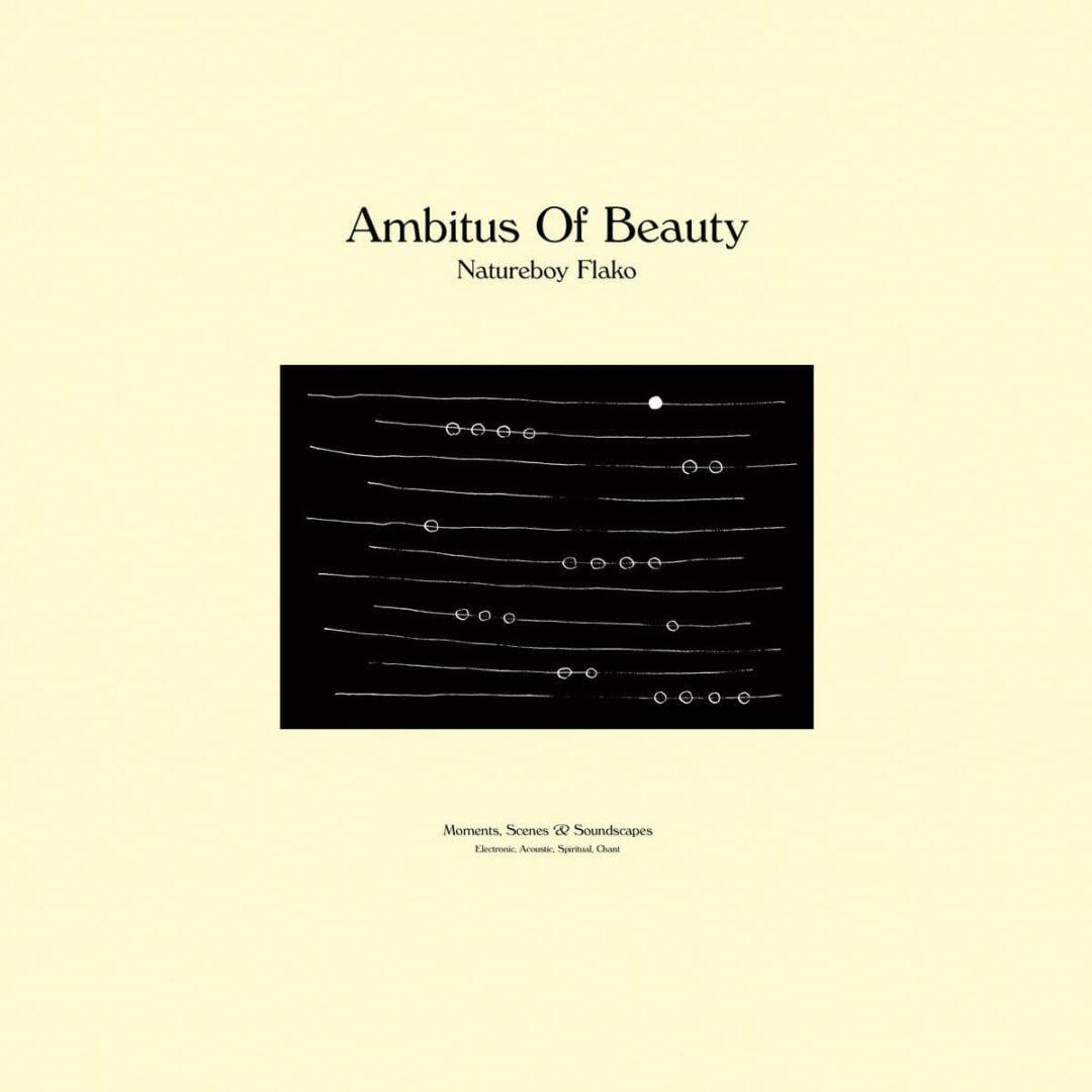 Natureboy Flako Ambitus Of Beauty HHV, Materialized Moments LP Vinyl
