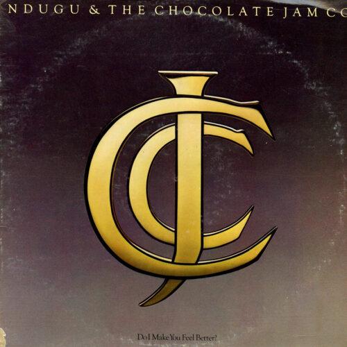 Ndugu & The Chocolate Jam Co. Do I Make You Feel Better? Epic LP Vinyl