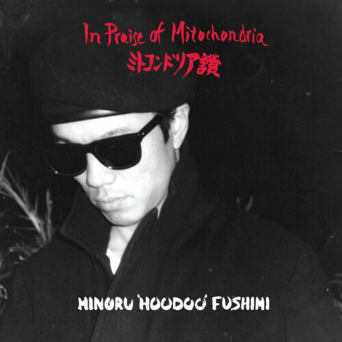 Minoru Hoodoo Fushimi In Praise Of Mitochondria Left Ear Records 2xLP, Compilation Vinyl