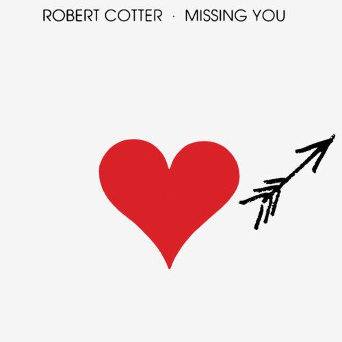 Robert Cotter Missing You Wewantsounds LP, Reissue Vinyl