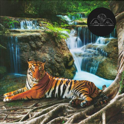 "Lone Abraxas Ancient Astronauts 12"", Clear, Repress Vinyl"