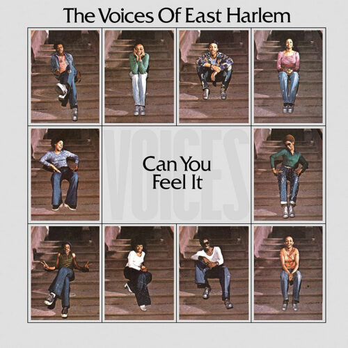 Voices Of East Harlem Can You Feel it Soul Brother Records LP, Reissue Vinyl