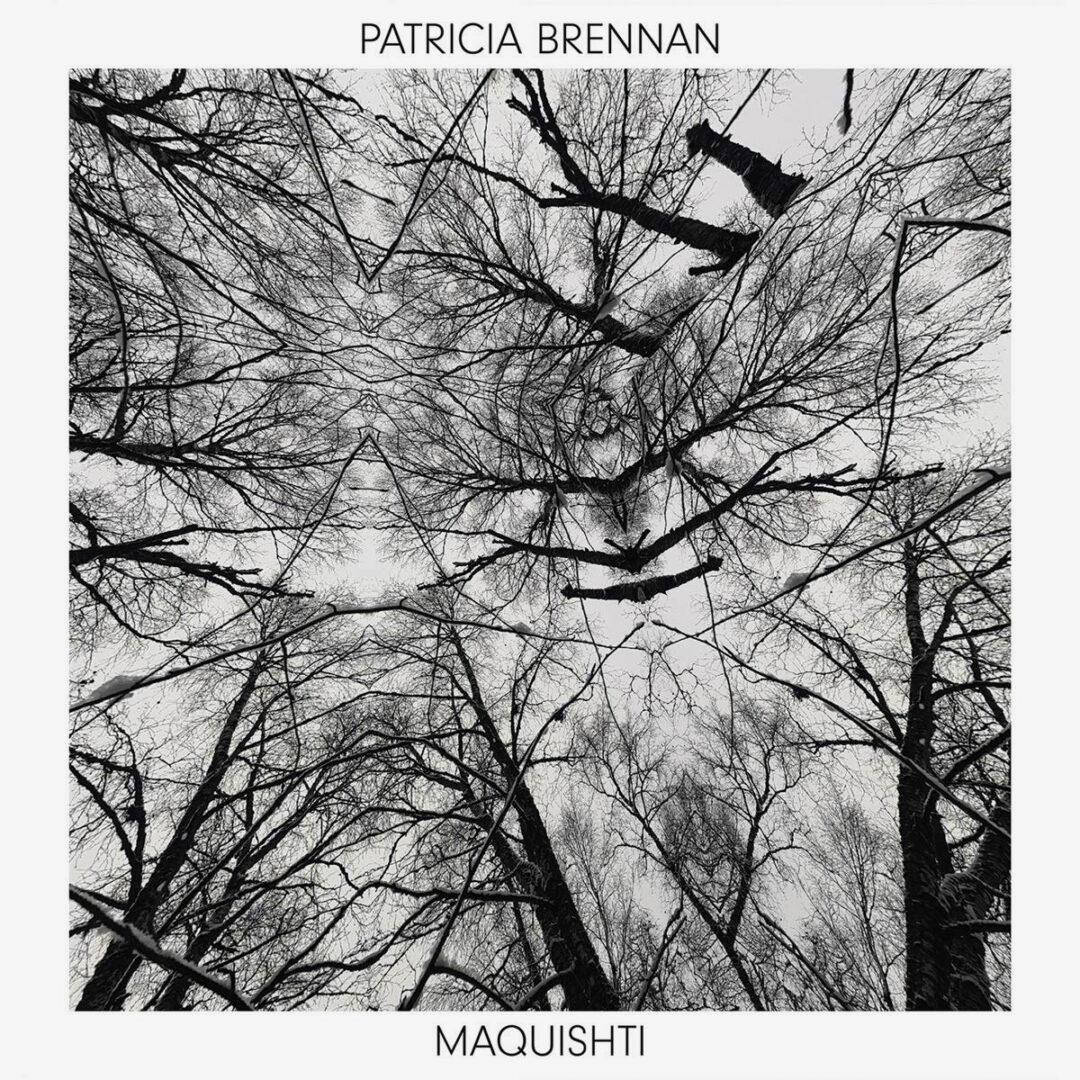 Patricia Brennan Maquishti Valley Of Search 2xLP, Reissue Vinyl