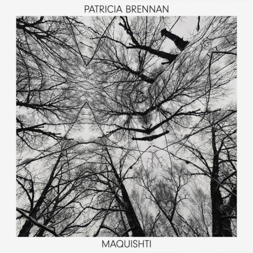 Patricia Brennan Maquishti Valley Of Search 2xLP, Reissue Vinyl