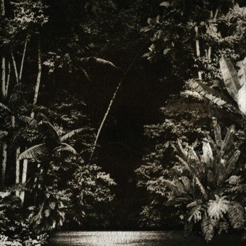 "Nicola Cruz Arpejos Da Floresta Highlife 12"" Vinyl"