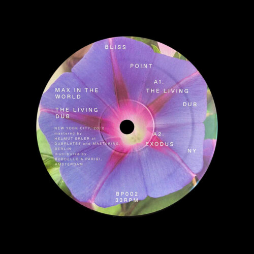 """Max In The World The Living Dub Bliss Point 12"""" Vinyl"""