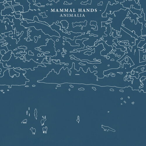 Mammal Hands Animalia Gondwana Records LP, Repress Vinyl