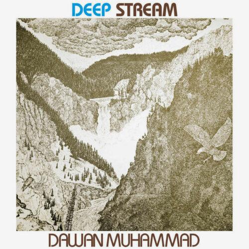 Dawan Muhammad Deep Stream High Jazz Records LP, Reissue Vinyl