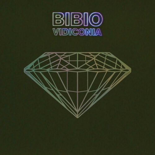 """Bibio Vidiconia Warp Records 12"""", RSD2021 Vinyl"""