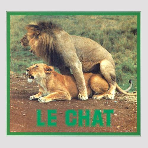 """Pussycat Le Chat Best Record 12"""", Reissue Vinyl"""