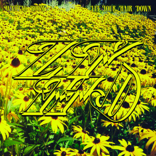 Let Your Hair Down Waiting Room College Of Knowledge LP Vinyl